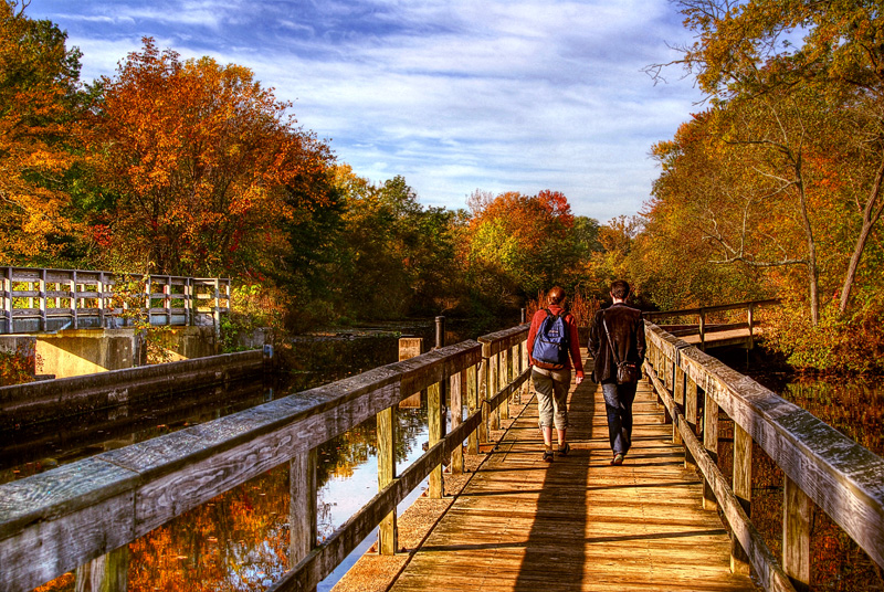 Students On The Tow Path In Fall