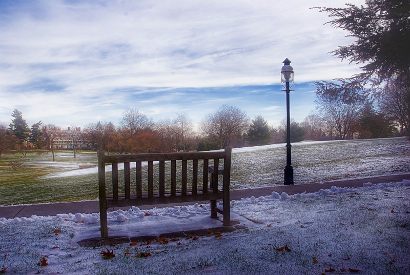 Bench On A Winter Afternoon