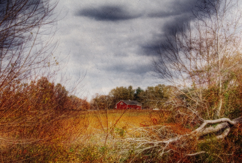 Red Barn In Fall #2